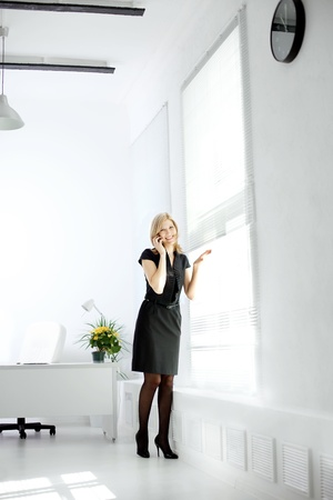 Image of business woman in the workplace Stock Photo - 11527494