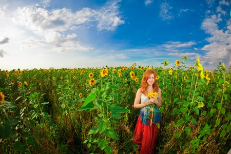 sunflower field: Beautiful red-haired woman with sunflowers Stock Photo