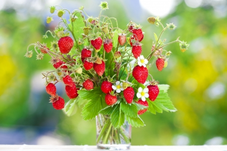strawberry plant: Juicy fresh bouquet of strawberries