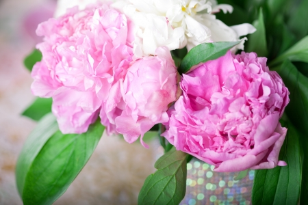 roses in vase: Peony in the Shabby Chic style