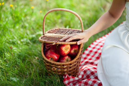 Basket with apples outdoors on grass.Picnic. photo