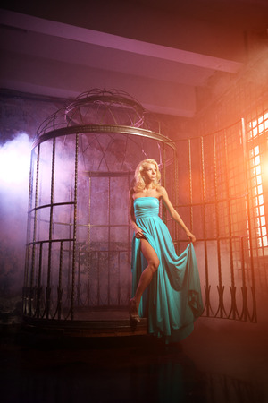 Beauty woman like a princess in the palace. Luxurious rich fashion stylish girl in a long evening dress in cage  photo