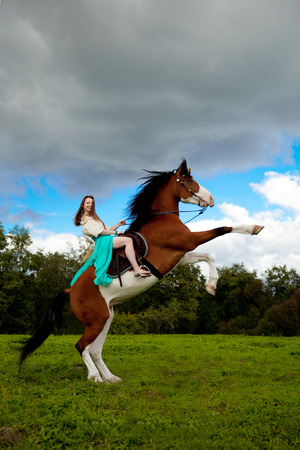 Beautiful young woman with a horse in the field. Girl on a farm with animal. Luxury woman outdoors Stock Photo
