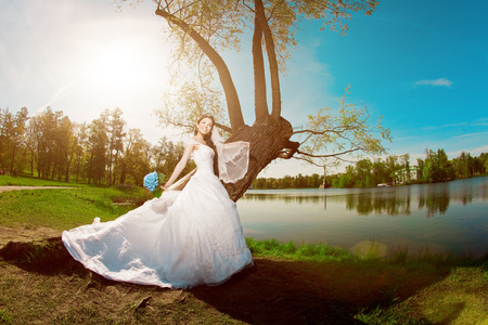 Beauty bride on a field in the sunshine photo