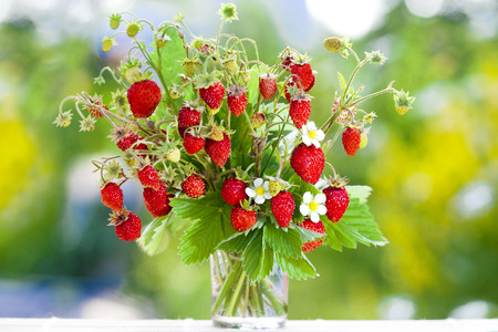 Juicy fresh bouquet of strawberries