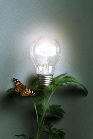 start up: Lamp. Concept start up idea design. Background business creative conceptual image about success
