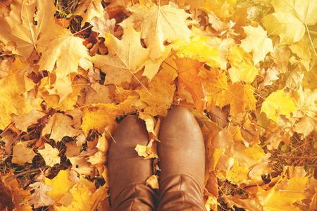 mujeres morenas: Ca�da, oto�o, hojas, las piernas y los zapatos. Imagen conceptual de las piernas en las botas de las hojas de oto�o. Pies zapatos para caminar en la naturaleza