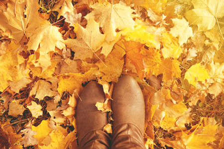 autumn in the park: Fall, autumn, leaves, legs and shoes. Conceptual image of legs in boots on the autumn leaves. Feet shoes walking in nature