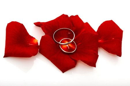 rose ring: Wedding concept for invitation card. wedding rings in petals of rose flower isolated on white background