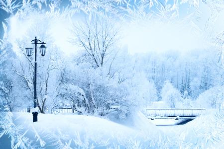 enero: Fondo del invierno, paisaje. Árboles del invierno en país de las maravillas. Escena de invierno. Navidad, Año Nuevo fondo Foto de archivo