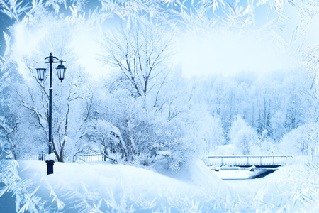 scenic landscapes: Winter background, landscape. Winter trees in wonderland. Winter scene. Christmas, New Year background Stock Photo