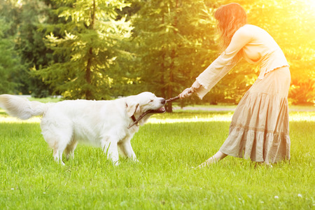 pet: Girl with retriever dog playing in the park. Stock Photo