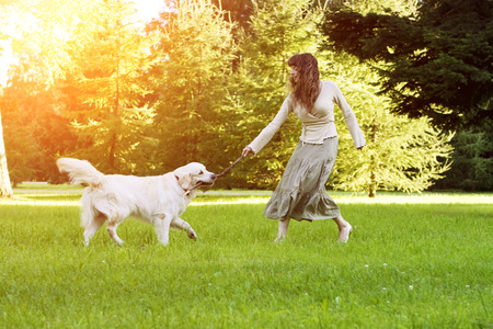 Dog training. Girl with retriever playing in the park. Woman walking a pet on a background summer The landscape. Joyful summer scene