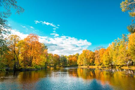 fall landscape: Fall landscape. Autumn park, lake, leaves and sun