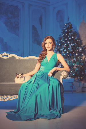 navidad elegante: Christmans party, winter holidays woman with cat. New year girl. christmas tree in interior background. Foto de archivo