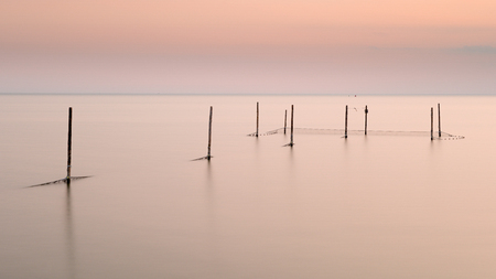 redes de pesca: Sunset pink sky and sea landscape with poles and fishing nets Foto de archivo