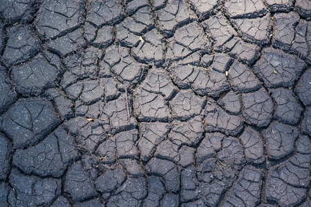dryed: Cracked dryed out earth pattern seen from above Stock Photo