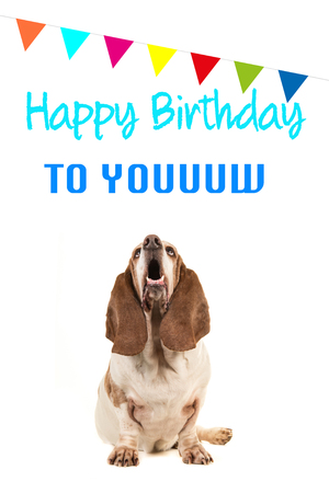 Basset Hound Looking Up And Singing Text Happy Birthday To You