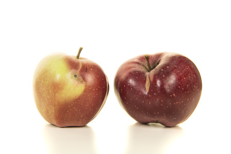 Two biological, organic, red apples with some small faults on a white background