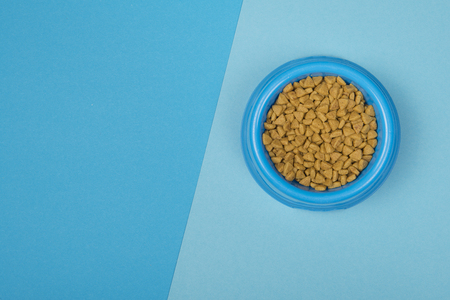 Round Blue food bowl with cat kibble seen from a high angle view on a background of two colors of blue with copy space Zdjęcie Seryjne