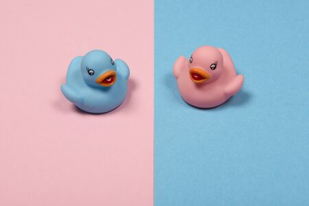 Pink and blue duckling on pink and blue background as a traditional sign for boy or girl as a concept for traditional gender seperation