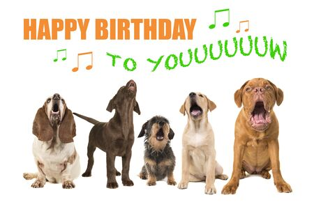 Group of dogs with various breeds looking up singing on a white background with the text Happy Birthday to you