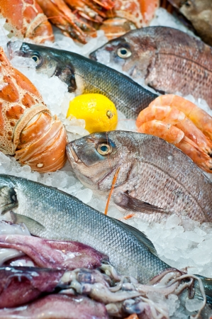 Fresh seafood displayed on the market photo