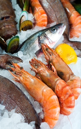 frozen fish: Fresh seafood displayed on the market