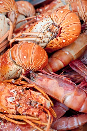 Fresh lobsters on the market Stock Photo