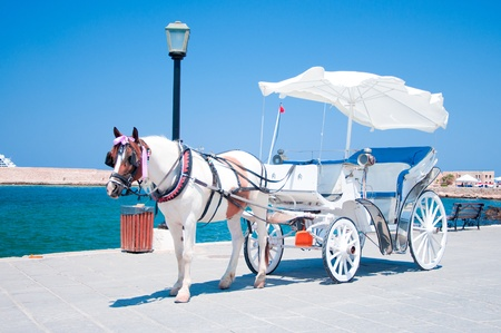 horse cart: Horse carriage in Chania