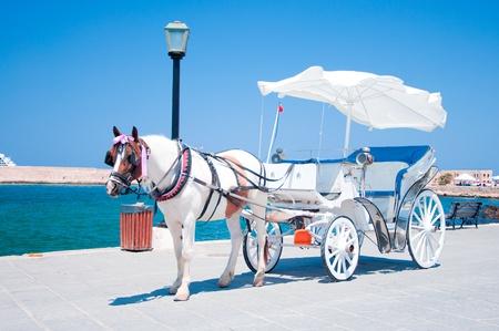 Paard en wagen in Chania