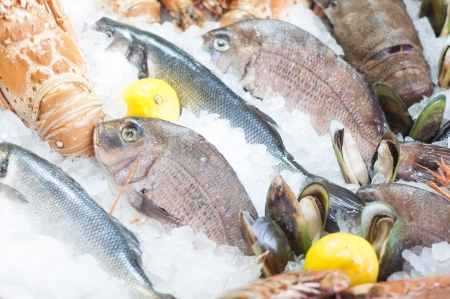 新鮮な魚介類の魚の市場で撮影
