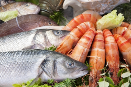 owoce morza: Świeże owoce morza fotografowane w targu rybnym