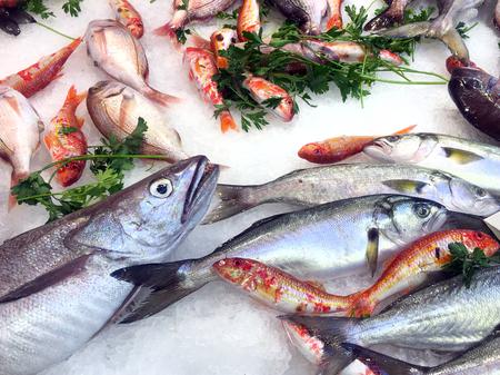 Frischer Fisch und Meeresfrüchte