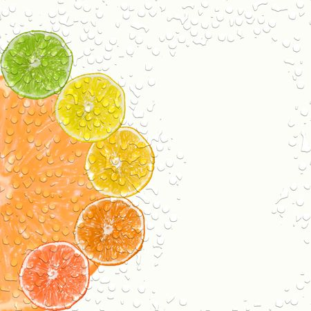 Slices of different citrus fruits cover with water drops photo