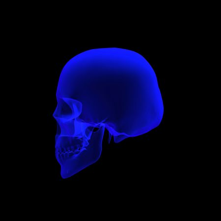 human skull  3d illustrated rendering in x ray in left view Stock Photo - 5563438