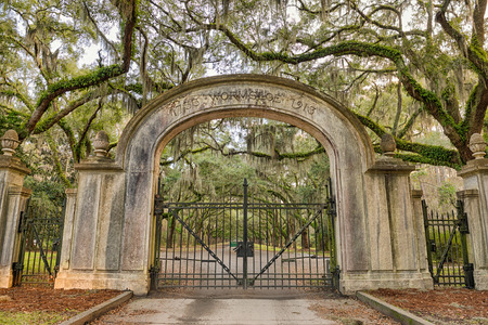 historic site: Entry gate to the Wormsloe Plantation Historic Site near Savannah, Georgia. Hdr processed.