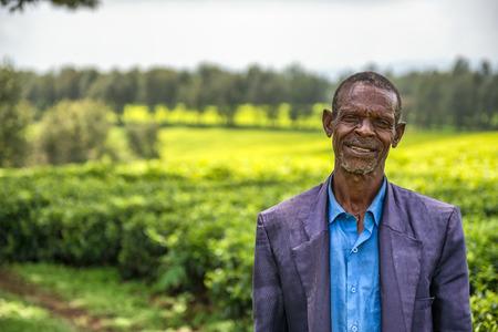 JIMMA, ETHIOPIA - MAY 2, 2015 : Ethiopian farmer on a tea plantation near Jimma, Ethiopia