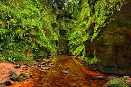 loch lomond: Finnich Glen, also known as Devils Pulpit near Loch Lomond, Scotland, United Kingdom. Hdr processed. Stock Photo
