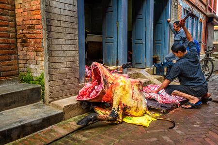 slaughtering: KATHMANDU, NEPAL - OCTOBER 25, 2015 : Nepalese butcher carves a cow in the street of Kathmandu