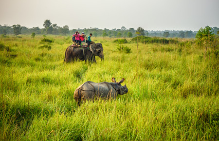 CHITWAN, NEPAL - OCTOBER 23, 2015 : Tourists watching and photographing a rhino from the back of an elephant  in Chitwan National Park.