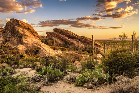 Sunset over Javelina Rocks in Saguaro National Park East near Tucson, Arizon Stock Photo