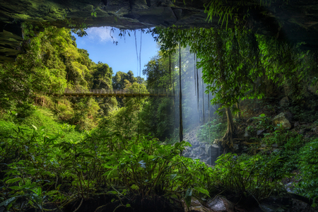 Footbridge and Crystal Falls along the Wonga Walk in the Rainforest of Dorrigo National Park,New South Wales, Australia. Long exposure.