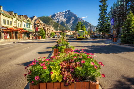 BANFF, ALBERTA, CANADA - JUNE 27, 2017 : Beautiful flowers on the famous Banff Avenue in a sunny summer day. Banff is a resort town and popular tourist destination. Banco de Imagens