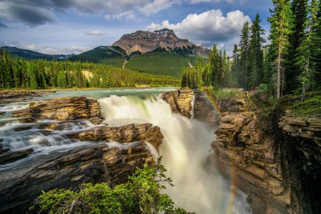 Sunwapta Falls in Jasper National Park, Canada 版權商用圖片