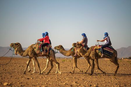 Camel caravan with tourists going through the Sahara Desert