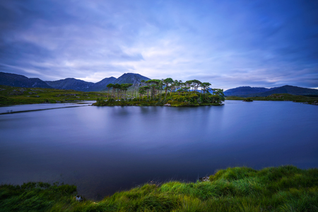 Pine Trees Island in the Derryclare Lake at sunset Standard-Bild - 127115133