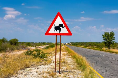 Warthogs crossing warning road sign placed along a road in Namibia