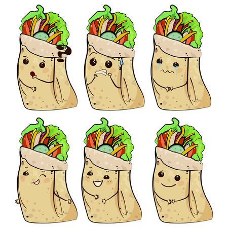 shawarma vector illustration with smiley face, chicken roll vector eps10