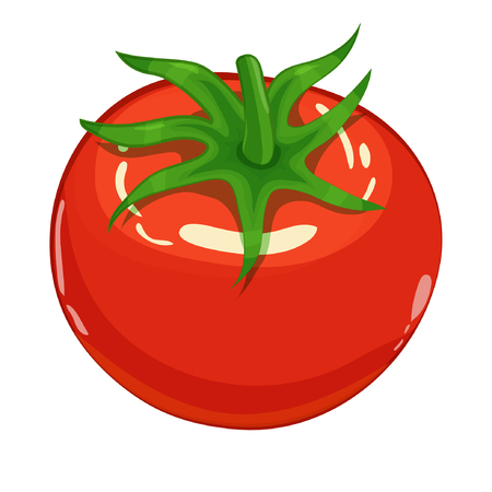 Tomato isolated single simple cartoon illustration